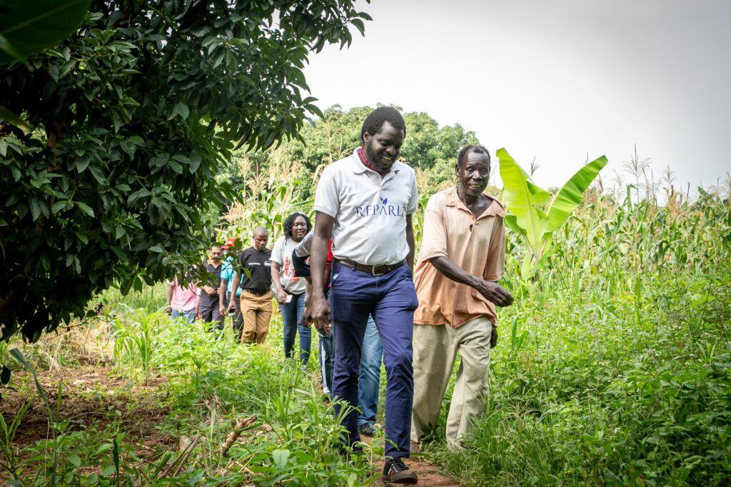Mandulis, la startup qui transforme les déchets agricoles en biomasse